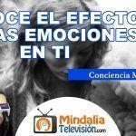 """Entrevista – """"Conoce el Efecto de las Emociones"""" 5/7"""