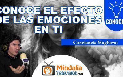 """Entrevista – """"Conoce el Efecto de las Emociones"""" 5/12"""